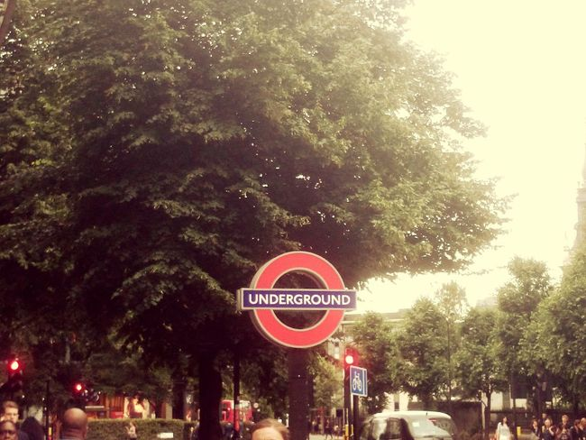 London Lifestyle Tree Growth Outdoors Sky No People Beauty In Nature Day London Underground Undergroundphotography