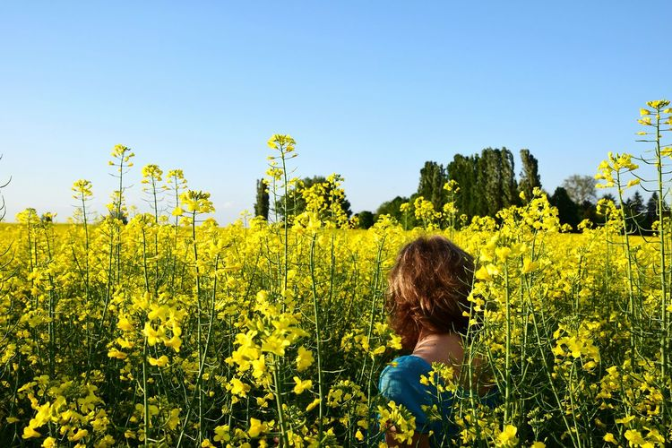 Rear view of woman on rape field against sky