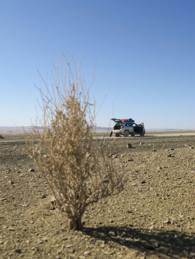 Car parked on the side of arid dirt road with punctured tire. Adventure Bush Car Clear Sky Desert Desert Dirt Road Explore Land Vehicle Landscape Let's Go. Together. Mode Of Transport Offroad Outdoors Plant Sand Sky Succulent Sunlight Sunny Transportation Travel Vehicle