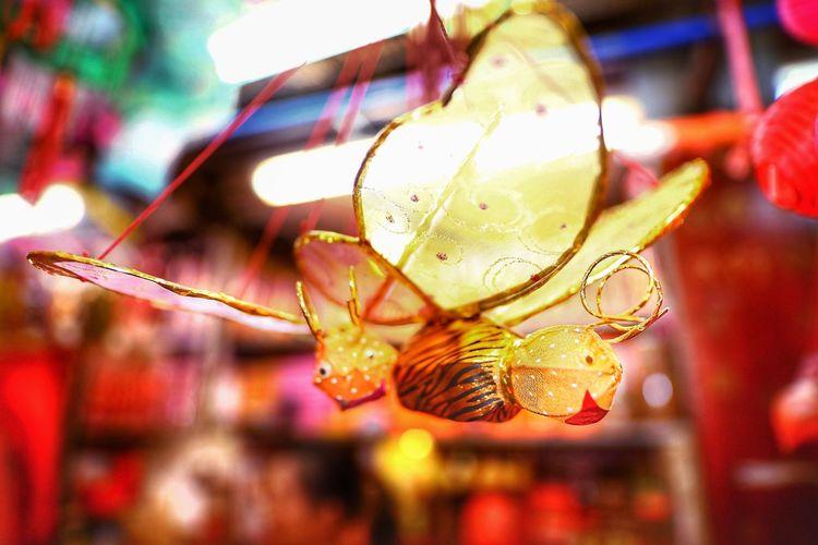 齊齊整整 , 一家同遊。 Lanterns Hanging Art And Craft Indoors  Group Of Objects Close-up Fragility Tai Kiu Market Yuen Long HongKong