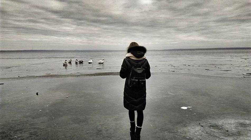 N A R O C H ⚓ *-*-*-*-*--*-*-**-*-*-*-*-*-*-*-*-*-* L. A. K. E. Lake Naroch Minsk Belarus Love Forever Winter Live Like Friends Lovely Trip Instagram Instaminsk Follow Livefolk