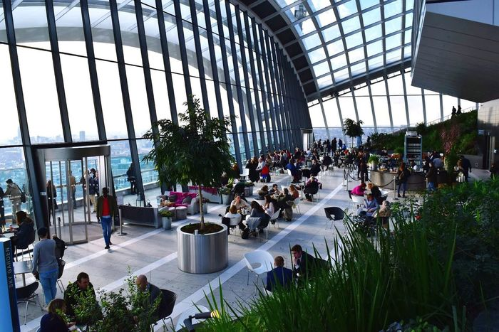 Skygarden London Architecture Interior Plants Greenery Scenery