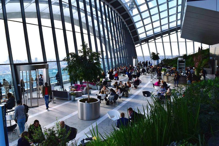 Skygarden London Architecture Interior Plants Greenery Scenery