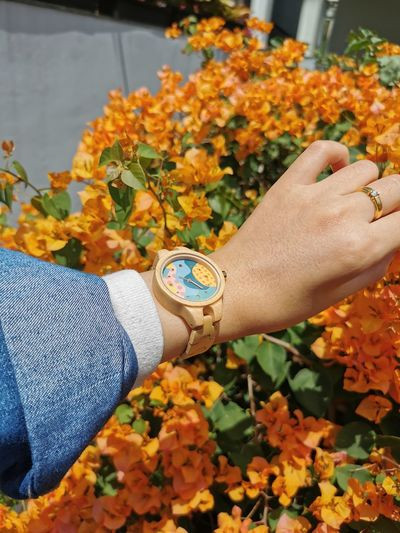 Midsection of person holding orange flowering plants during autumn