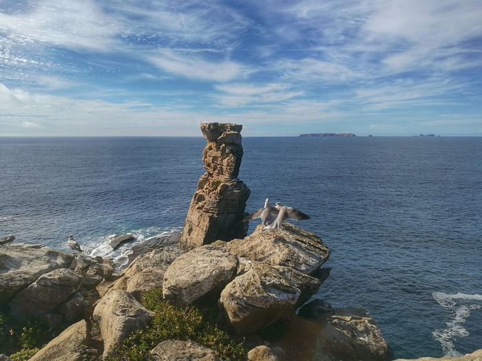 Sea Horizon Over Water Water Sky Scenics Tranquility Tranquil Scene Cloud - Sky Nature Non-urban Scene Driftwood Shore Beauty In Nature Blue Day Cliff Outdoors Remote Seascape No People Oo HuaweiP9 Peniche, Portugal Capturedonp9