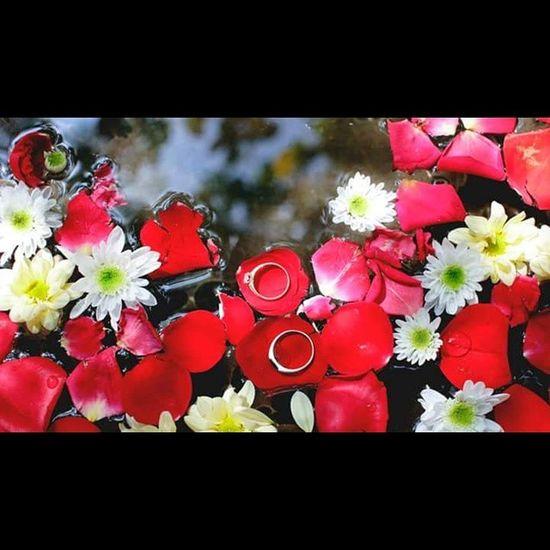 AKRAM+AZRA WEDDING PACKAGES STARTS FROM RM1650.00 Call/WhatApp/Wechat : 019 7766 914 Mail : 7kalerpicture@gmail.com http://www.facebook.com/7kalerpicture 7kalerpicture Wedding Malaywedding Weddingphotography Prewedding Postwedding Love Couple Bridegroom Reception Portrait Vscocam VSCO Kahwin Nikah Akadnikah Nikah Tunang Sanding Tandang Pengantin Sayajualservis Majlis Kualalumpur Malaysia alhamdulillah reception weddingpackages