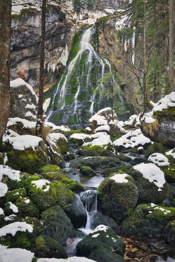 Winter Wintertime Beauty In Nature Blurred Motion Day Flowing Flowing Water Forest Land Long Exposure Moss Motion Nature No People Outdoors Plant Power In Nature Rock Rock - Object Scenics - Nature Solid Stream - Flowing Water Tree Water Waterfall