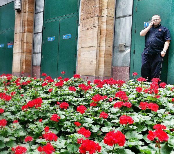 Man On Mobile Street Photography Summer Flowers Green Doors