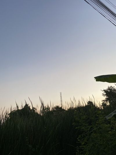 Last light Sky