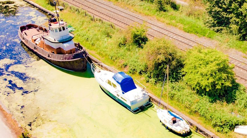 Boats Nature Plant High Angle View Tree Day Sunlight Transportation