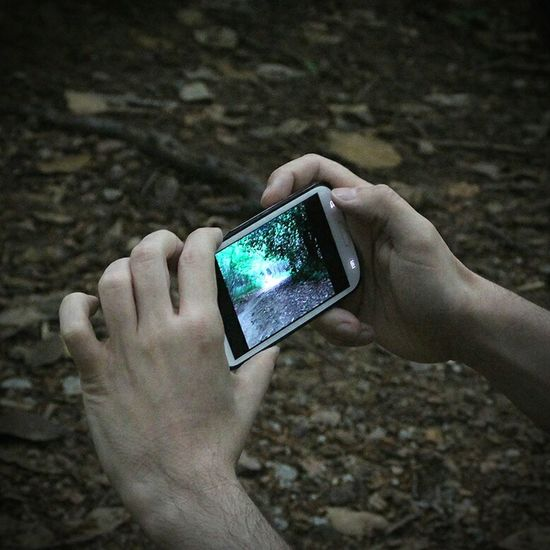 Movil Cellphone Photography Forest Forestwalk Conceptual Photography  Copy Space