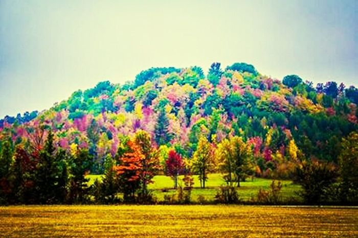 Northern Michigan fall is the most beautiful place on earth ♥