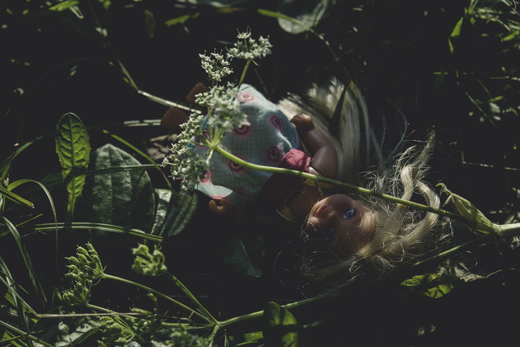 Blonde Branch Creepy Day Doll Focus On Foreground Grass Growth Hidden Leaves Nature Plant Tranquility