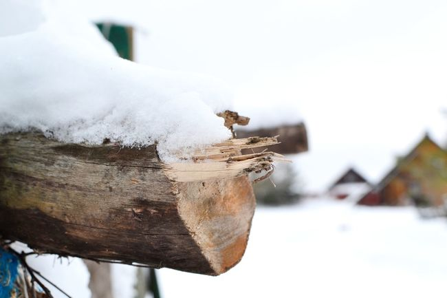 Close-up Cold Temperature Day Farm Life Log Nature No People Outdoors Snow Snow Capped Village Scene Winter