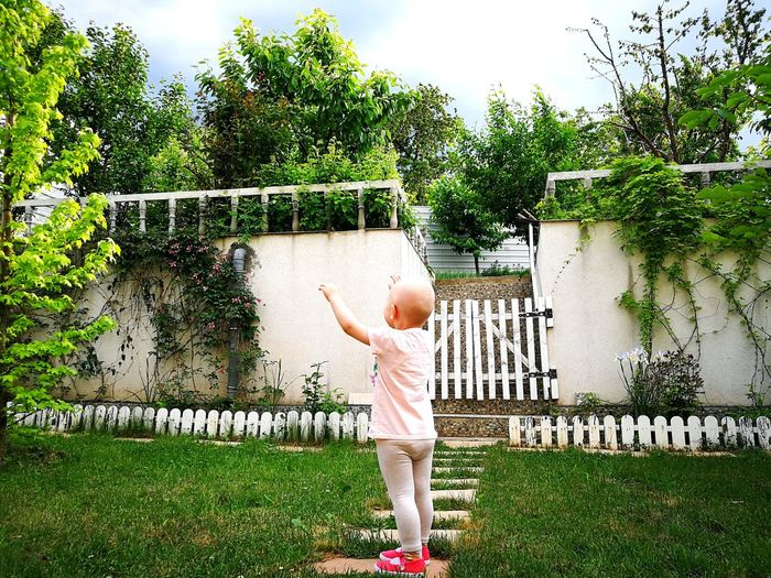 Nature Green Springtime Childhood Child With Hands In Air Beautiful Nature Beautiful Garden Back Yard Domestic Garden Green Color Green Natural Wondering Nature And Life Man And Nature Tree Full Length Standing Childhood Grass Sky Architecture Green Color Backyard Front Or Back Yard Garden Domestic Garden Picket Fence Botanical Garden Path Moms & Dads