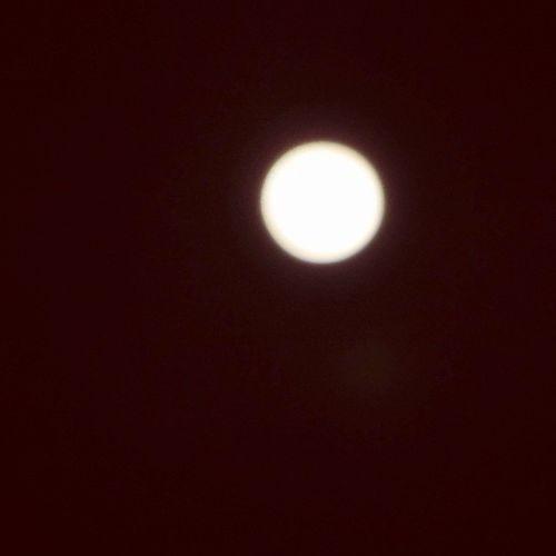 There was an uncomfortable peace in the moon that night. Yqr SK  Nature Moon fullmoon beautiful pretty night mothernature ladd00 canada explorecanada travelcanada prairielife prairies prairieskies landoflivingskies Saskatchewan sask exploresask