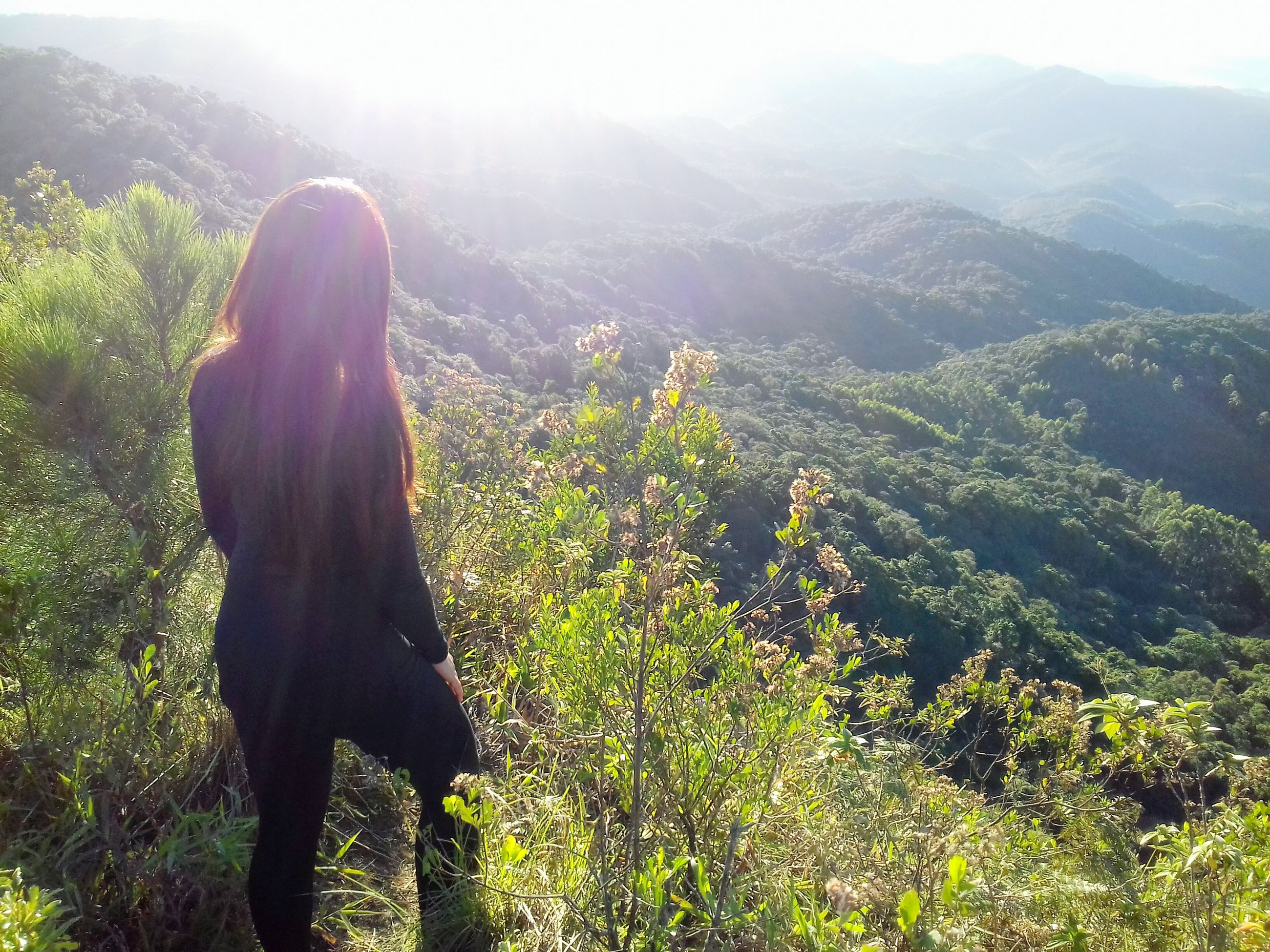 one person, nature, real people, long hair, rear view, mountain, plant, women, tranquility, standing, day, sunlight, outdoors, leisure activity, full length, landscape, growth, young adult, tree, beauty in nature, young women, lifestyles, adult, people