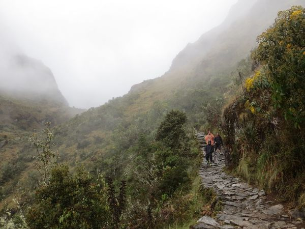 Mountain Fog Nature Adventure Hiking Foggy Mist Real People Men Scenics Beauty In Nature Day Mountain Range Full Length Climbing Landscape Challenge Outdoors Hiking Lifestyles Ancient Civilization Inca Ruins Peru Inca Trail Travel Destinations Lost In The Landscape