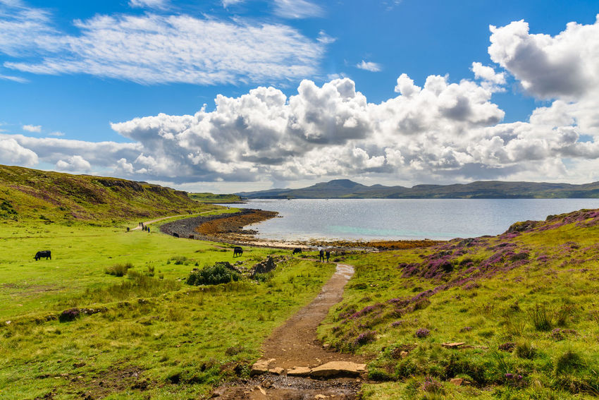 Coral Beach, Isle Of Skye Scotland Beauty In Nature Cloud - Sky Day Field Grass Green Color Landscape Nature No People Outdoors Scenics Sea Sky Tranquil Scene Tranquility Water