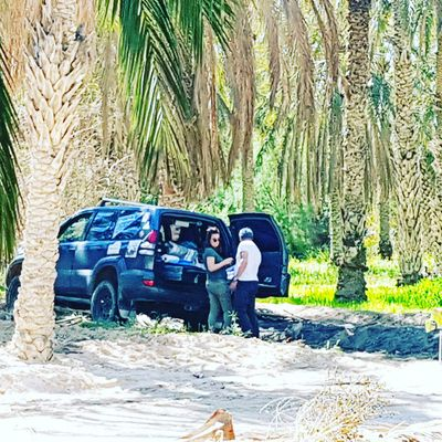 Spanish group in oasis of Elfaouar Tunisia Tunisia Tunisia❤ Tunisia <3 Tunisie Tunisia_with_love Tunisie Terre D'accueil El Faouar Tunisie El Faouar Tunisia Palm Leaf Plams🌴 Palmtrees Kebilli Tunisia❤ Kebili Palm Tozeur, Tunisia Tozeur Tree Full Length Men Adventure Palm Tree Forest Car Sports Utility Vehicle Hiding Couple Off-road Vehicle Behind Hummingbird 4x4 Hands Covering Eyes Camouflage Obscured Face Motocross Tire Track Pick-up Truck Peeking Adventures In The City