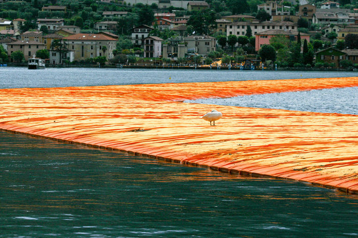 The Floating Piers is a work of art by Christo and Jeanne-Claude on display from june 18 to july 3 2016 Christoandjeanneclaude Colour Dalia Floatingpier Lake Landscape Outdoors Water Work Of Art Showcase June My Year My View