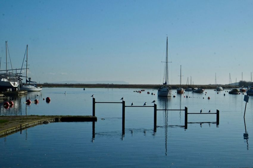 Clear Sky Day Harbor Mode Of Transportation Moored Nature Nautical Vessel Reflection Sailboat Sea Sky Transportation Water Waterfront
