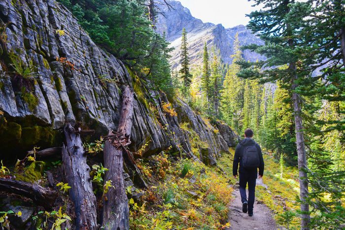 Adventure Backpack Beauty In Nature Canda Forest Hiking Outdoors Rear View Wanderlust Waterton Lakes National Park Young Adult The Great Outdoors - 2017 EyeEm Awards Let's Go. Together.