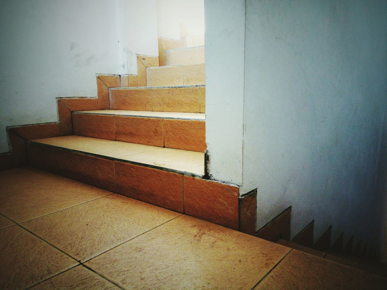steps and staircases, staircase, steps, indoors, architecture, built structure, no people, day