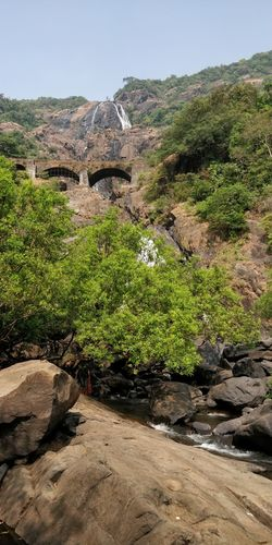 the poetry of earth is never dead Doodhsagar Outdoors Day Landscape Green Color Arid Climate Scenics Nature Mountain
