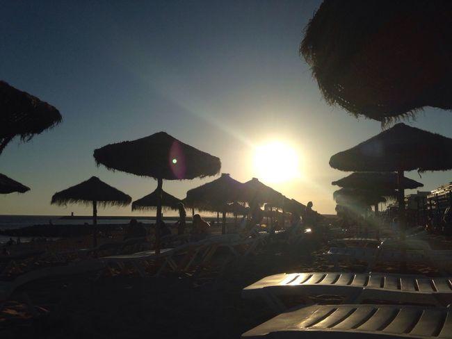 Sun Sunset Beach Ocean