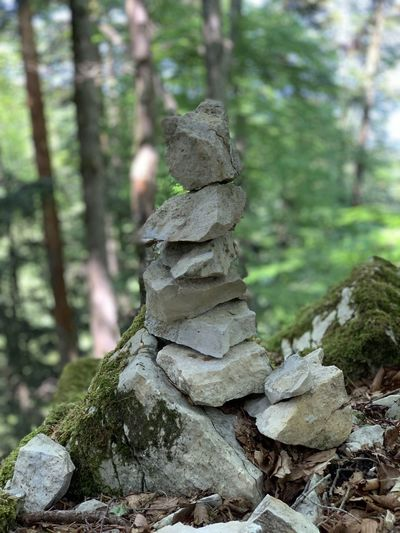 Close-up of stack of rocks in forest