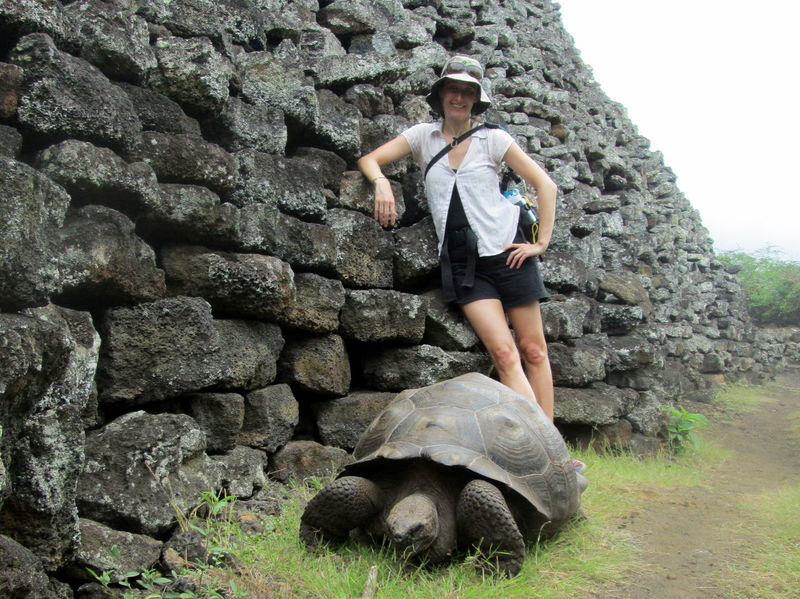 Animals In The Wild Casual Clothing Front View Full Length Giant Tortoise Leisure Activity Lifestyles Person Rock - Object Standing Stone Stone - Object Stone Wall Tortoise Wildlife Young Adult Young Women