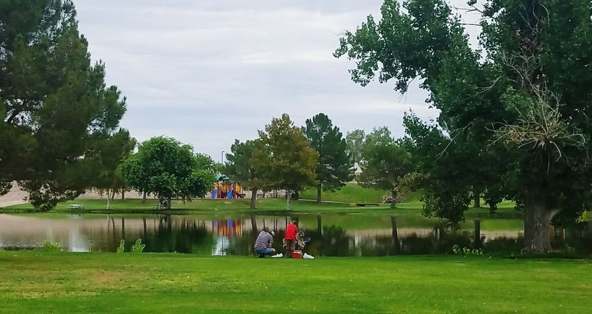 Fishing Time Outdoor Photography Father And Son Enjoyment Summer Togetherness Leisure Activity Portrait People Green Color Park Life Park View Parkbench Parks & Ponds