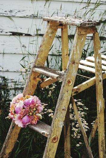 Perched Ladder Bouquet Chipped Paint Rungs Garden Flower Flower Head Close-up Architecture Built Structure Plant Blooming Petal