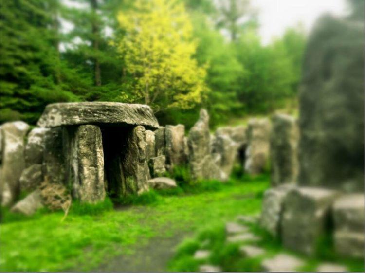 The Temple Druids Druids Temple Druid's Secret Place