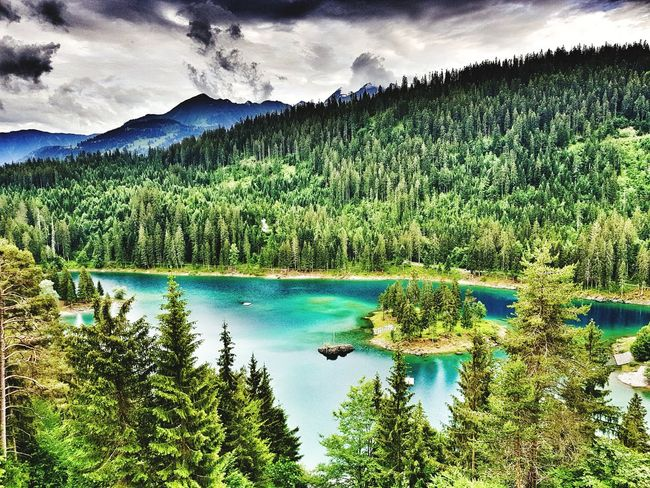 pure grace, pure joy... Mountain Alps Nature Wildlife Wilderness Travel Destinations Switzerland The Great Outdoors - 2018 EyeEm Awards Tree Water Mountain Lake Reflection Sky Cloud - Sky Green Color Countryside Calm Lakeside Tranquil Scene Green Tranquility Farmland Greenery Woods Non-urban Scene Grassland Growing Idyllic Cloud