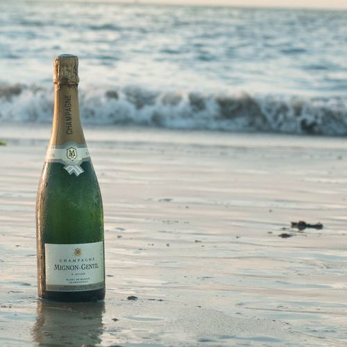 Champagne Wine Sea Beach Winelover