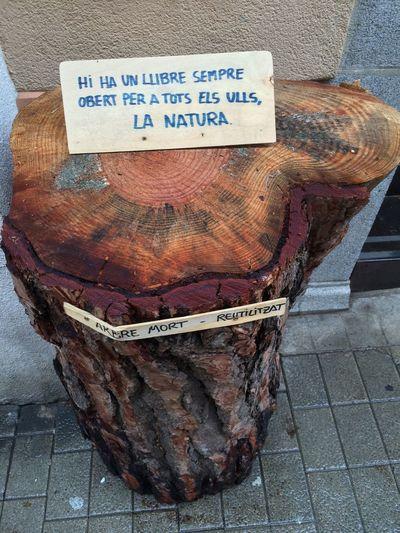 Nature Catalunyalove Art HDR