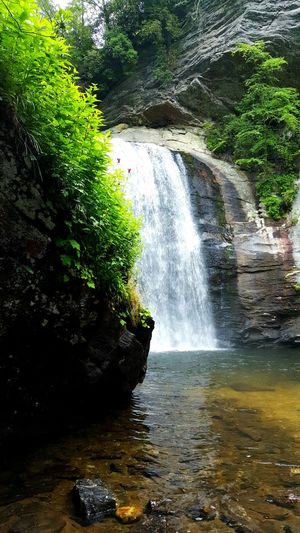 Waterfall Nature Lush Foliage Scerenity Rocks Cliffs Flowers Clear Water Water Active Lifestyle  Travel Scenics Landscape Grotto Hidden Waterfall Magical Meditation Scerene Looking Glass Falls North Carolina