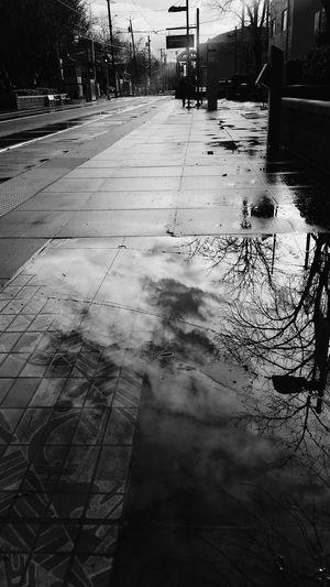 Wet Reflection Water Rain Rainy Season Tree Nature Outdoors Sky Day Sacramento California Love