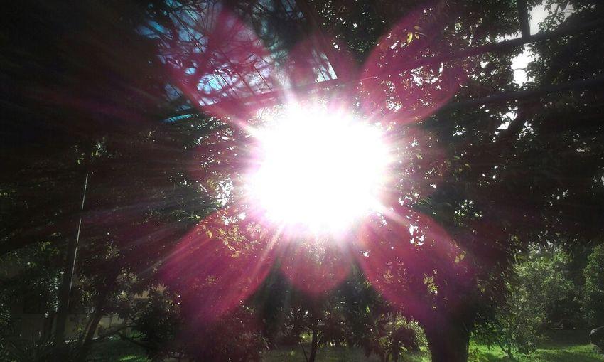 Shining through....