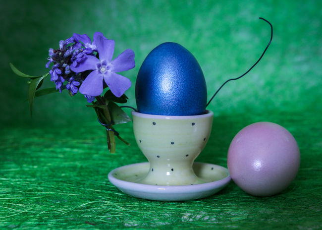 CELEBRATION DAY Colored Eggs Buquet Flower Green Backgound Story Photography Blue Flowers Green Leaves Blue And Green Easter Dekoration Easter Egg Egg Easter Green Color Celebration Fragility Flower No People Eggcup Close-up Indoors  Freshness Grass Food