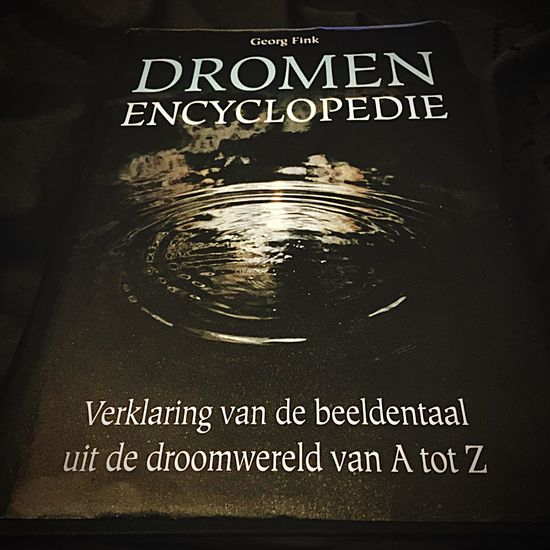 Not because I can not sleep because of the nightmares, but because I want to understand them. Dreaming Dromen Books Boek