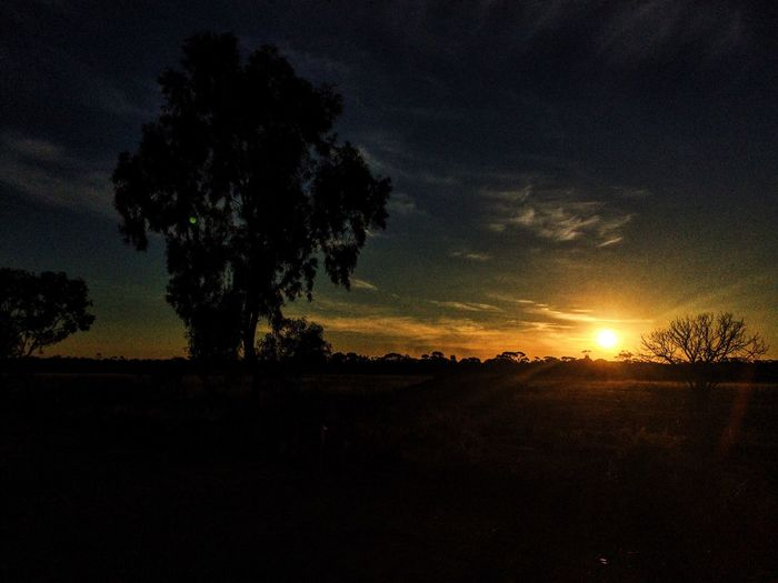 Babakin Western Australia Perth Australia Sunset