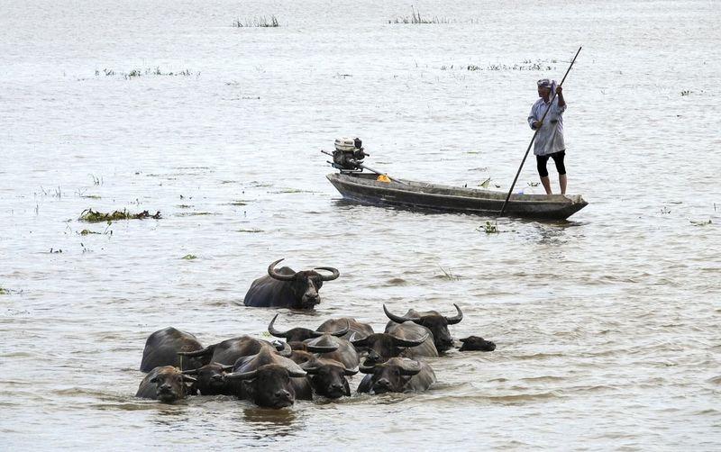 Man In Boat On River