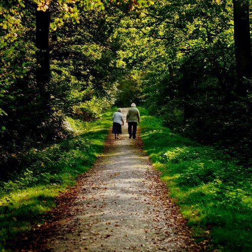 Rear View Of Senior Couple Walking On Pathway Amidst Trees