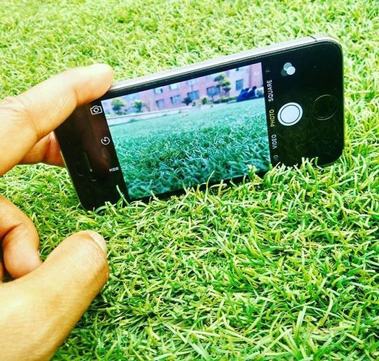 It took me long to figure out that this Grass is Fake.. Iphone5s Grass Green Fake Amity Delhi Mi4 Irfan