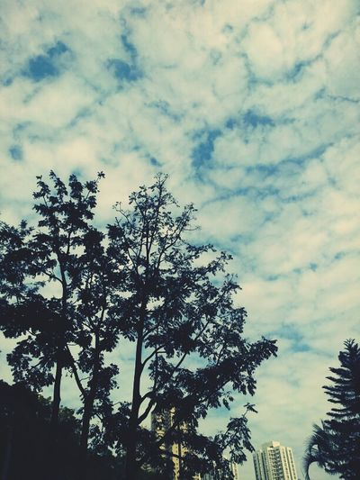 Clouds Sky HongKong Bluesky