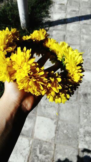 венок хризантемы желтыецветы лето