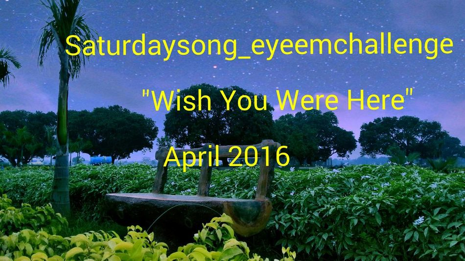 Thanks a lot to the Eyeem Photograper who started this challenge and thanks to those photographers who participated and is keeping the Challenge alive. This is my turn to host this challenge for the current week till Saturday 16th April 2016. The Saturdaysong_eyeemchallenge topic of this week is Wish You Were Here* based on the song of Pink Flyod , follow the url https://m.youtube.com/watch?v=IXdNnw99-Ic , to find the song in youtube . For rules go to the tag Saturdaysong_eyeemchallenge_rules. You need to capture a photo which refelcts the song. Remember don't foget to tag the above tags. The challenge will be started from APRIL 16, SATURDAY 00:00 A.M. TO 11:59 P.M. (INDIAN STANDARD TIME). So post your photo within that time.
